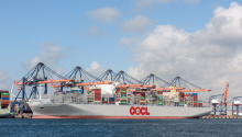 Evergreen Looks Single and Happy in Container Shipping Love